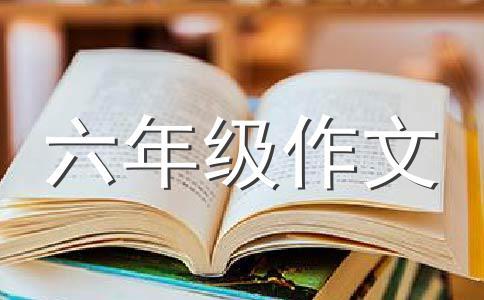 师生情500字作文