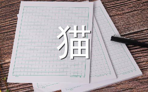 大熊猫200字作文